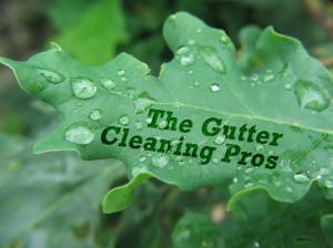 Gutter Cleaning Jacksonville, FL